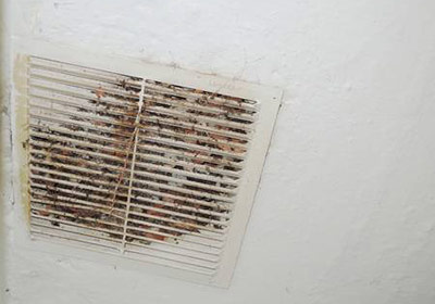 Preventing Mold in Air Ducts
